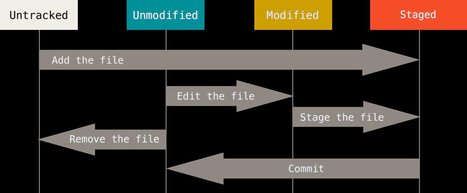 文件的状态变化周期